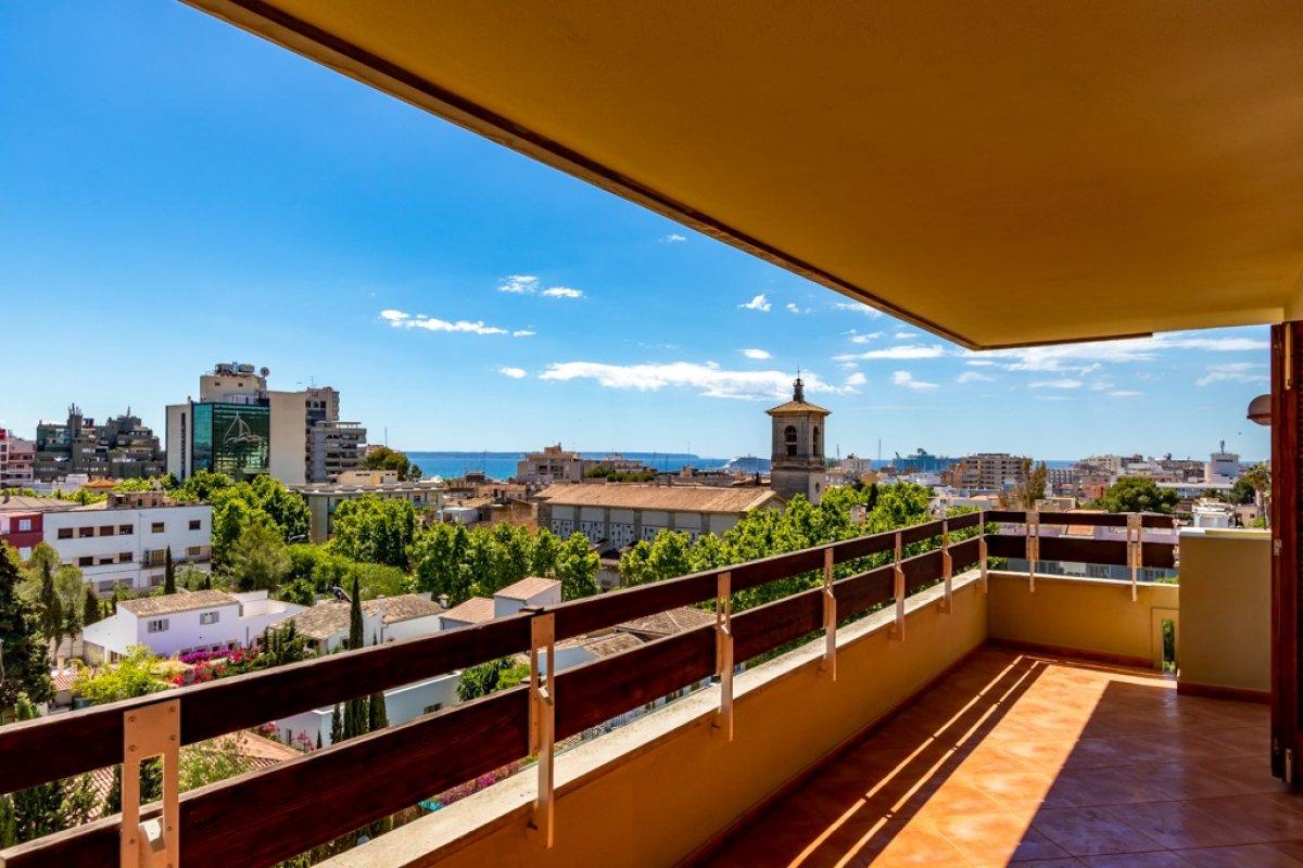 Crecimiento de la venta de pisos en Mallorca